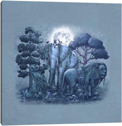 Stone Garden Square Canvas Print #TFN188