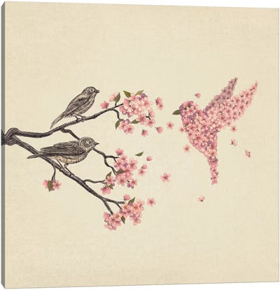 Blossom Bird Square Canvas Art Print
