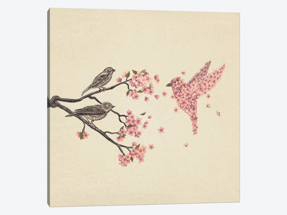 Blossom Bird Square by Terry Fan 1-piece Canvas Artwork