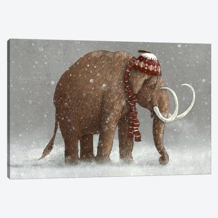 The Ice Age Sucked Canvas Print #TFN198} by Terry Fan Canvas Art Print