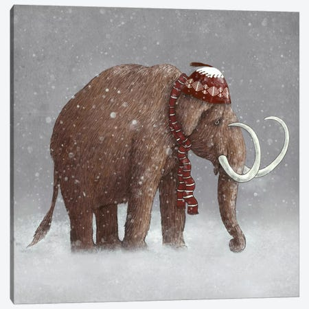 The Ice Age Sucked Square Canvas Print #TFN199} by Terry Fan Canvas Print