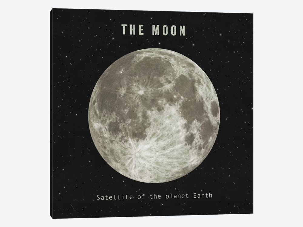 The Moon by Terry Fan 1-piece Art Print