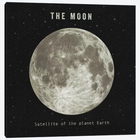 The Moon Canvas Print #TFN204} by Terry Fan Canvas Wall Art