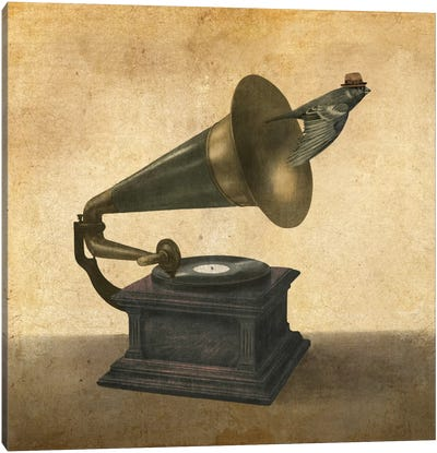 Vintage Songbird Canvas Print #TFN223