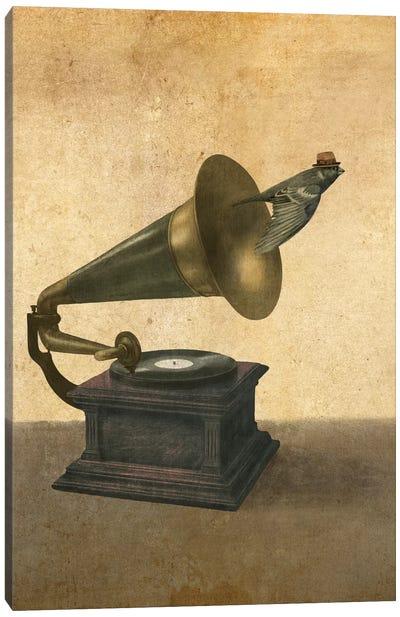 Vintage Songbird Portrait Canvas Print #TFN224