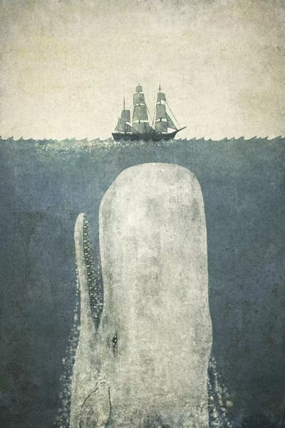 White Whale Canvas Art Print By Terry Fan Icanvas