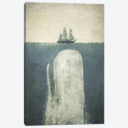 White Whale Canvas Print #TFN231} by Terry Fan Canvas Wall Art