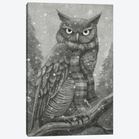 Winter Owl Canvas Print #TFN236} by Terry Fan Art Print