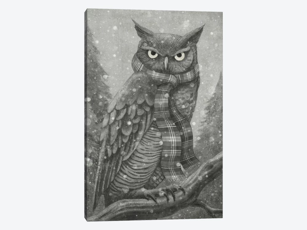 Winter Owl by Terry Fan 1-piece Canvas Wall Art