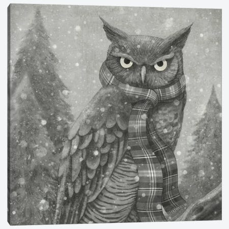 Winter Owl Square Canvas Print #TFN237} by Terry Fan Canvas Print