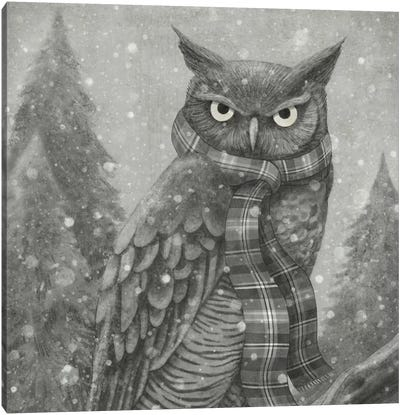 Winter Owl Square Canvas Art Print