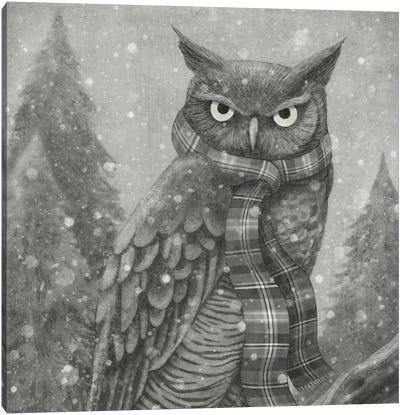 Winter Owl Square Canvas Art Print