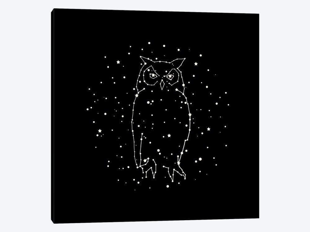 Owl Constellation by Terry Fan 1-piece Canvas Print
