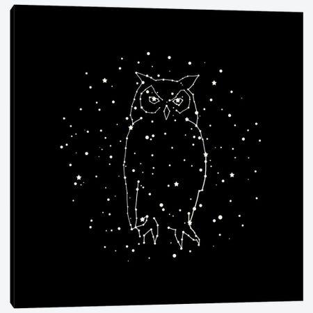 Owl Constellation Canvas Print #TFN248} by Terry Fan Art Print