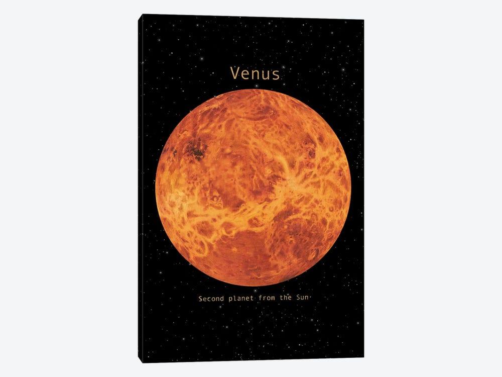 Venus by Terry Fan 1-piece Canvas Wall Art