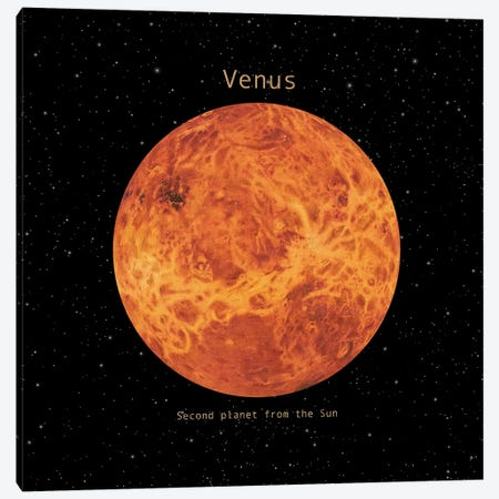 Venus Square Canvas Print #TFN255} by Terry Fan Art Print