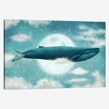 In The Clouds Canvas Print #TFN262} by Terry Fan Art Print
