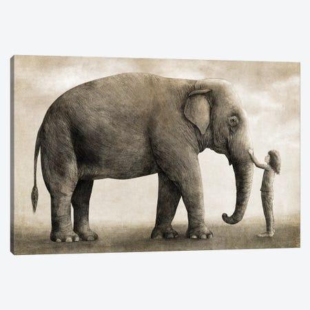 One Amazing Elephant Canvas Print #TFN267} by Terry Fan Canvas Artwork