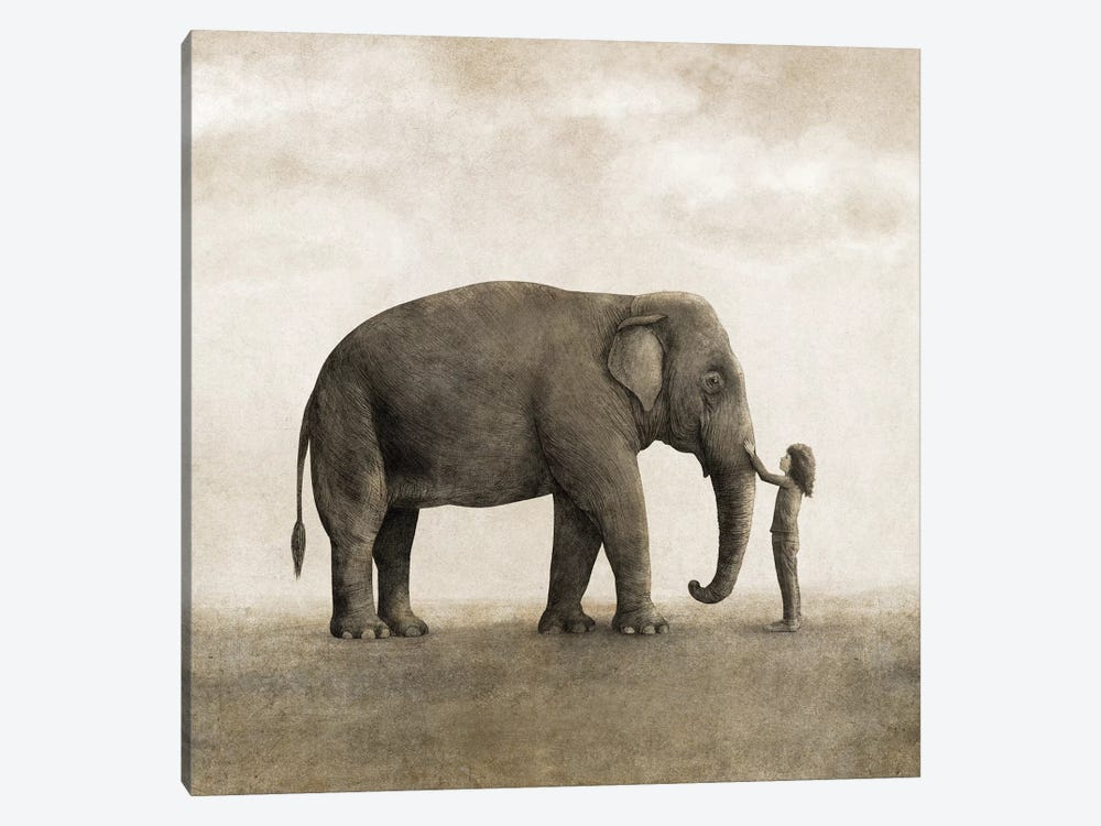 One Amazing Elephant Square by Terry Fan 1-piece Art Print