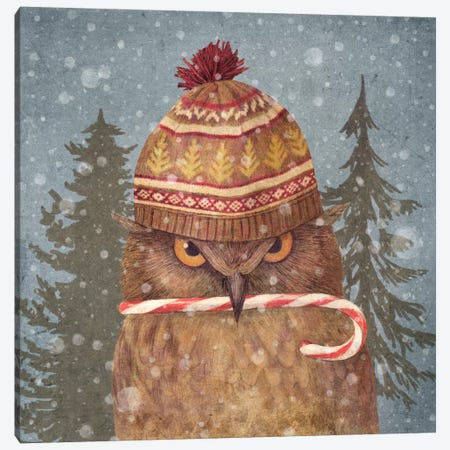 Christmas Owl Canvas Print #TFN27} by Terry Fan Canvas Art