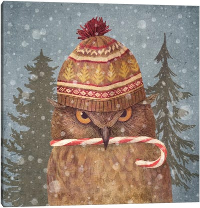 Christmas Owl Canvas Art Print