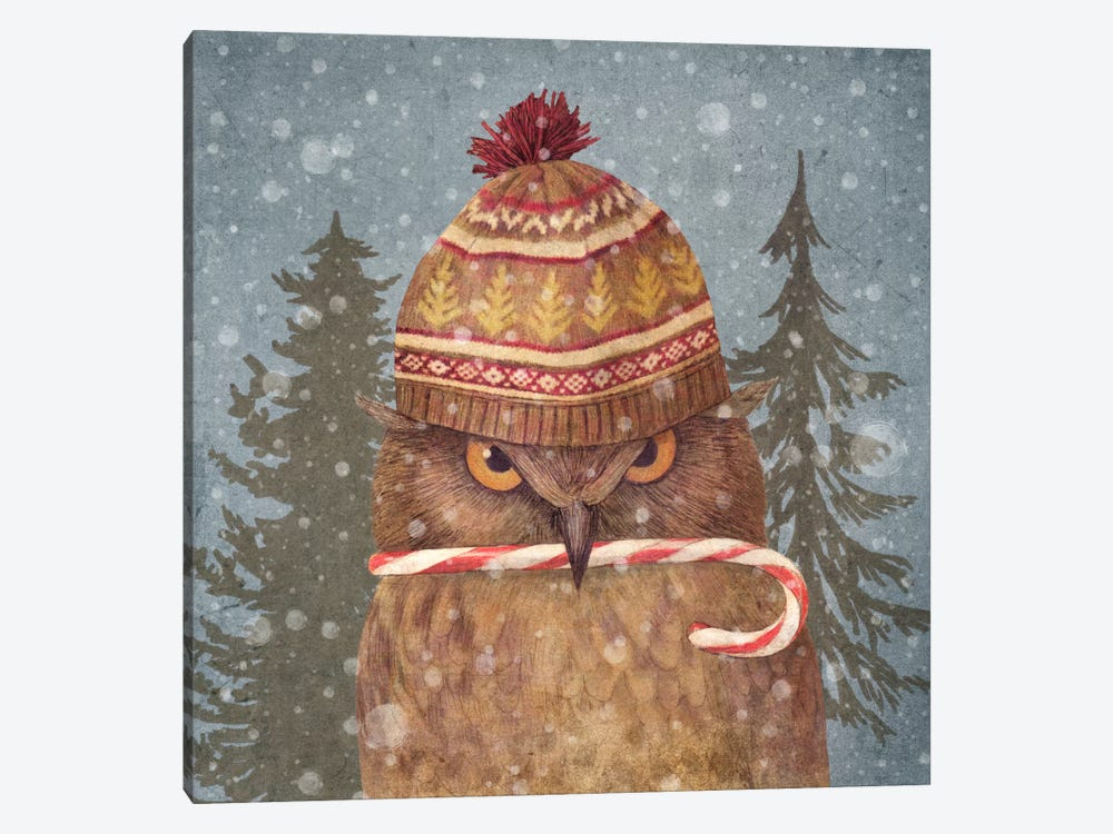 Christmas Owl by Terry Fan 1-piece Canvas Wall Art