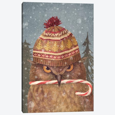 Christmas Owl Portrait Canvas Print #TFN28} by Terry Fan Canvas Art Print