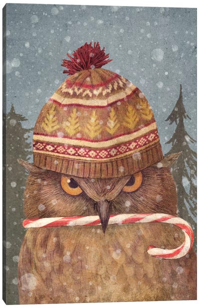 Christmas Owl Portrait Canvas Art Print