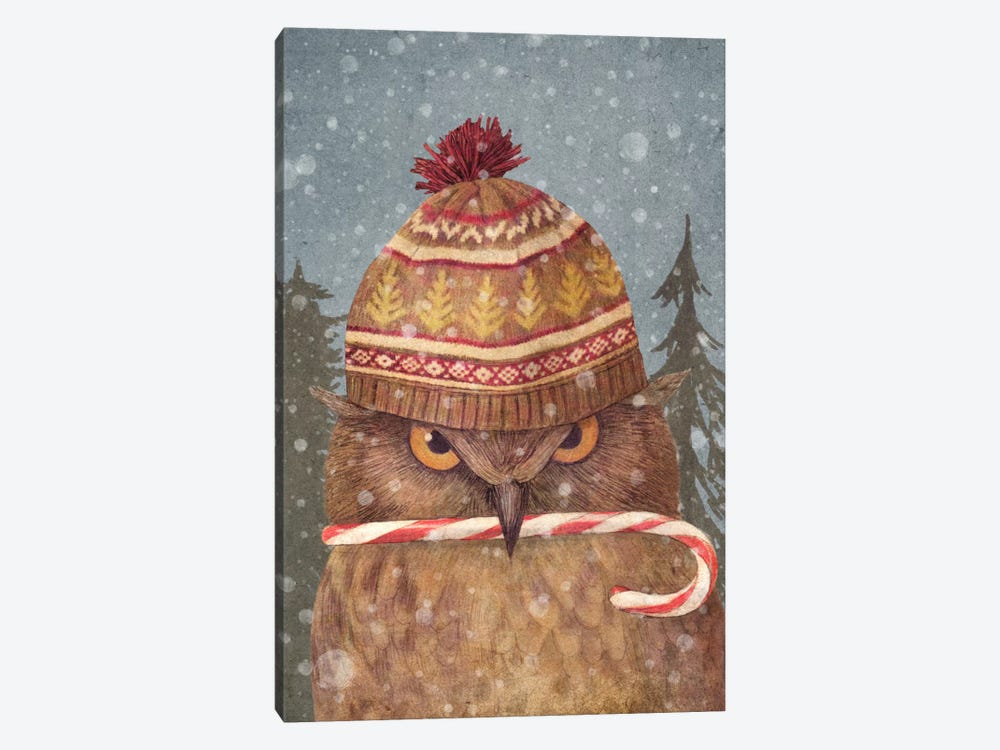 Christmas Owl Portrait by Terry Fan 1-piece Art Print