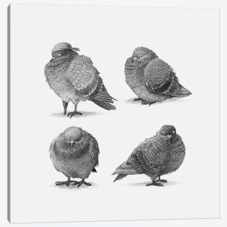 Four Pigeons  3-Piece Canvas #TFN295} by Terry Fan Canvas Art Print