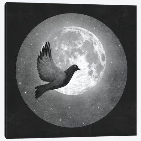 Lunar Flight Canvas Print #TFN307} by Terry Fan Canvas Art Print