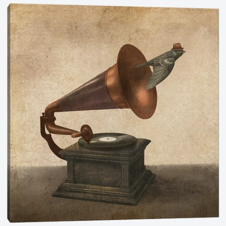 Vintage Songbird II Canvas Print #TFN310} by Terry Fan Canvas Print