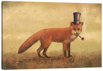 Crazy Like A Fox Canvas Art Print