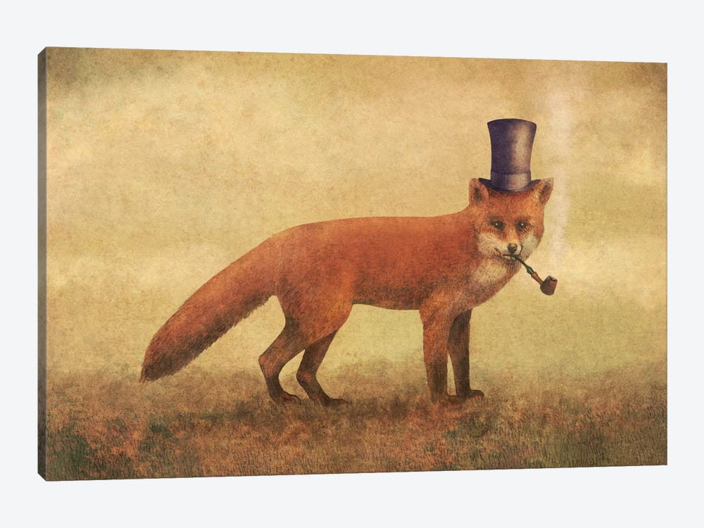 Crazy Like A Fox by Terry Fan 1-piece Canvas Art Print