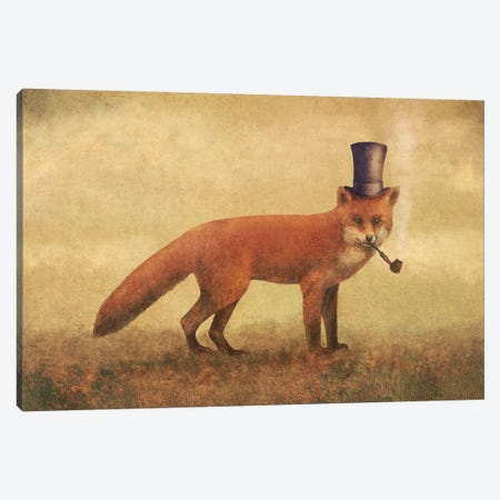 Crazy Like A Fox Canvas Print #TFN37} by Terry Fan Canvas Art Print
