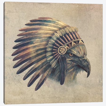 Eagle Chief #1 Canvas Print #TFN53} by Terry Fan Canvas Wall Art