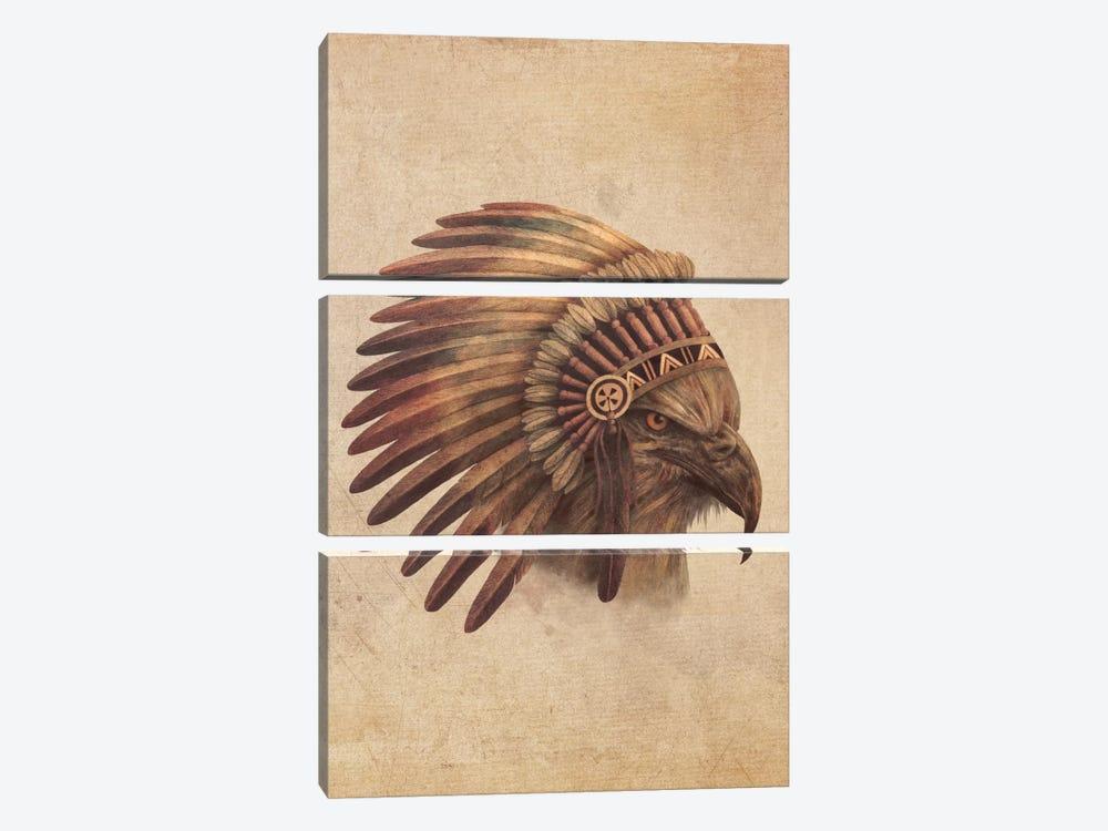 Eagle Chief Portrait #1 by Terry Fan 3-piece Canvas Art