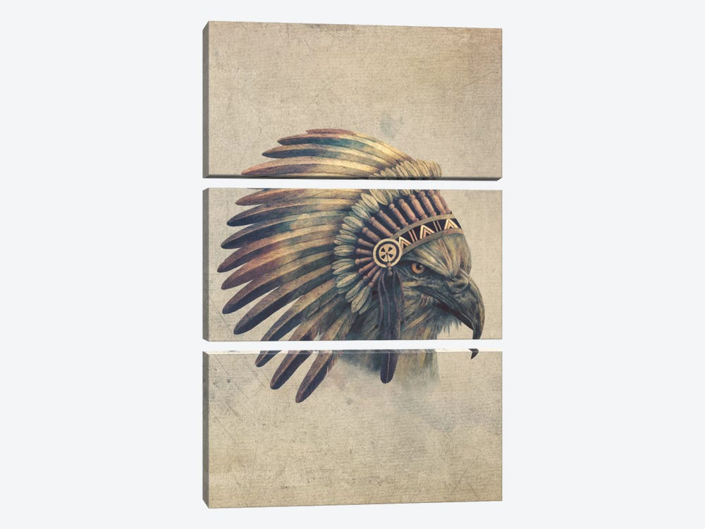 Eagle Chief Portrait #2 by Terry Fan 3-piece Canvas Wall Art