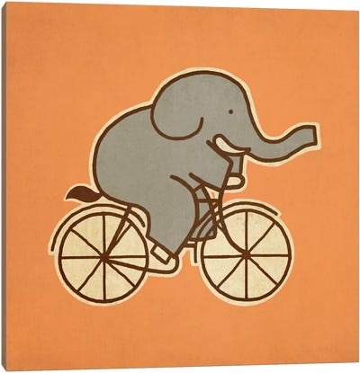 Elephant Cycle #1 Canvas Art Print
