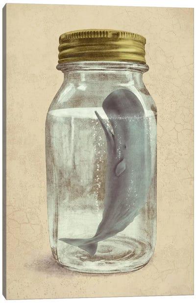 Extinction Canvas Art Print