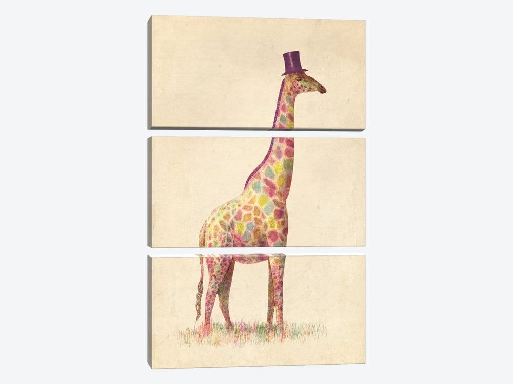 Fashionable Giraffe by Terry Fan 3-piece Canvas Art Print