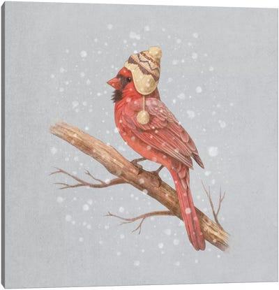 First Snow #1 Canvas Art Print