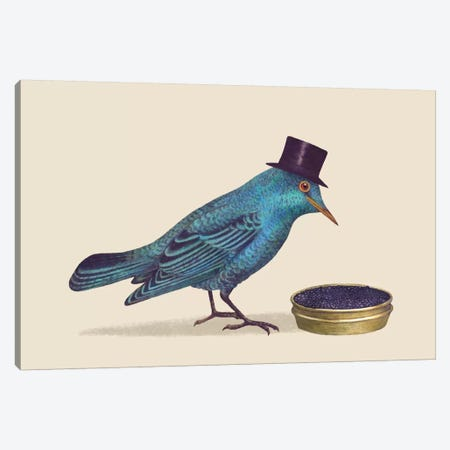 Gentlebirds Prefer Caviar Canvas Print #TFN96} by Terry Fan Canvas Print