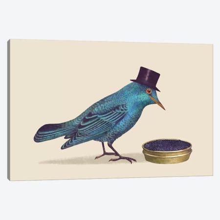 Gentlebirds Prefer Caviar Canvas Print #TFN96} by Terry Fan Canvas Print