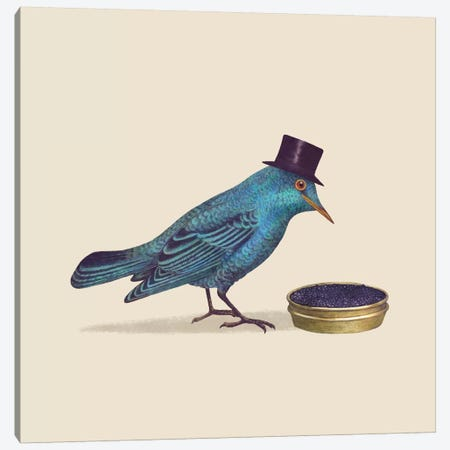 Gentlebird Square Canvas Print #TFN97} by Terry Fan Art Print