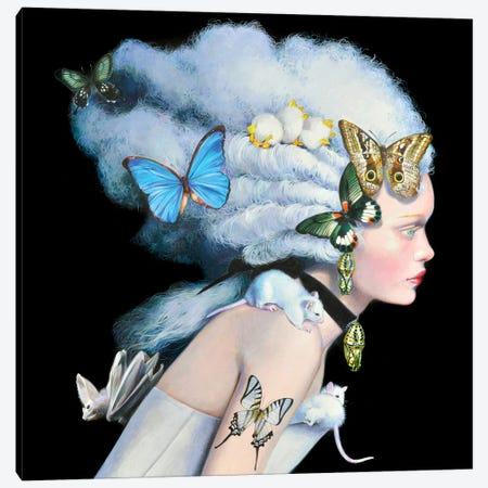 Wonderful Wig Canvas Print #TGA42} by Titti Garelli Canvas Print