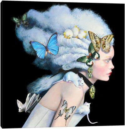 Wonderful Wig Canvas Art Print