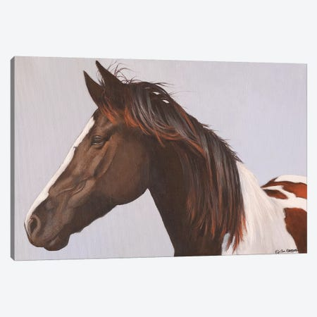Horse Canvas Print #TGN2} by Tim Gagnon Canvas Artwork