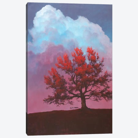 Red Tree Canvas Print #TGN3} by Tim Gagnon Canvas Art