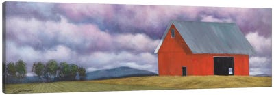 Rural Skies Canvas Art Print